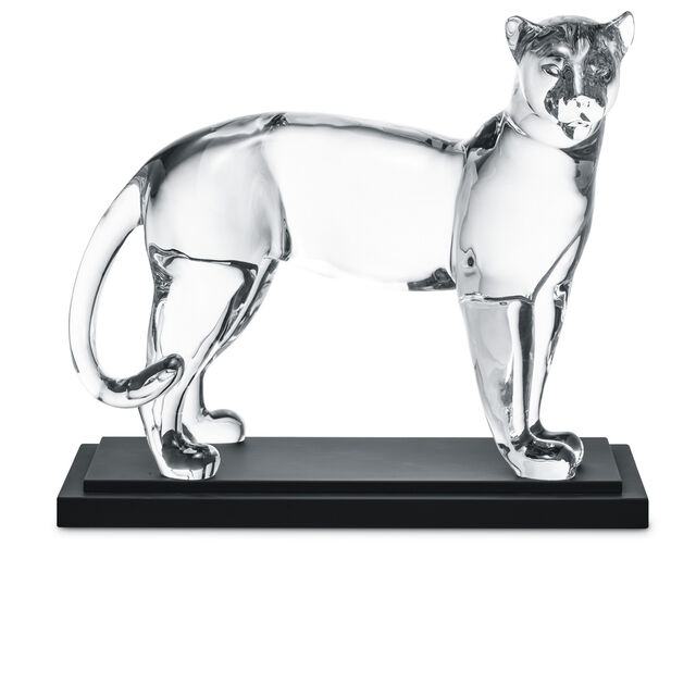 LARGE PANTHER, Clear