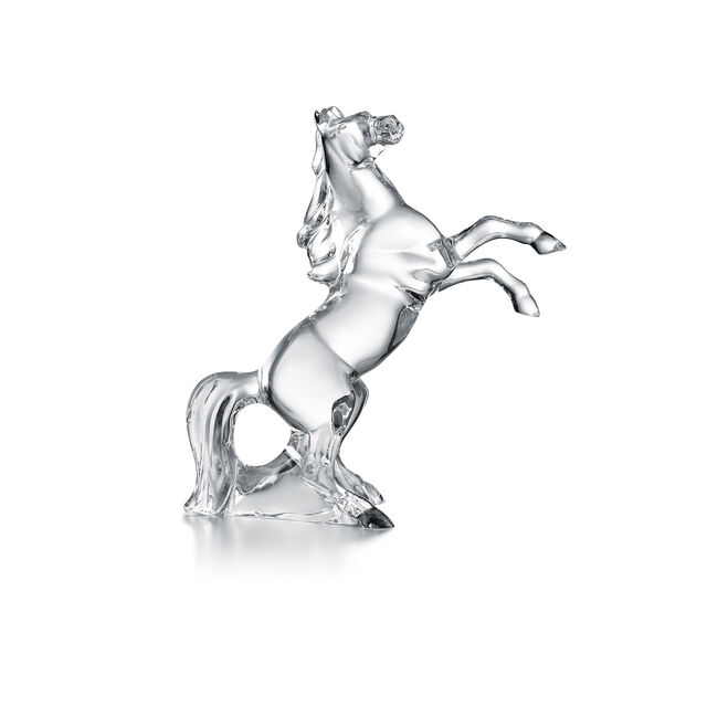 MARENGO HORSE, Clear