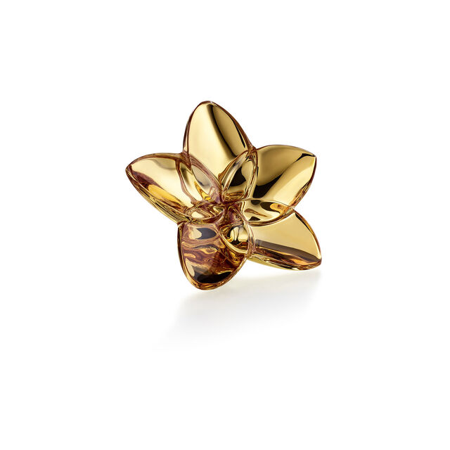 THE BLOOM COLLECTION, Gold