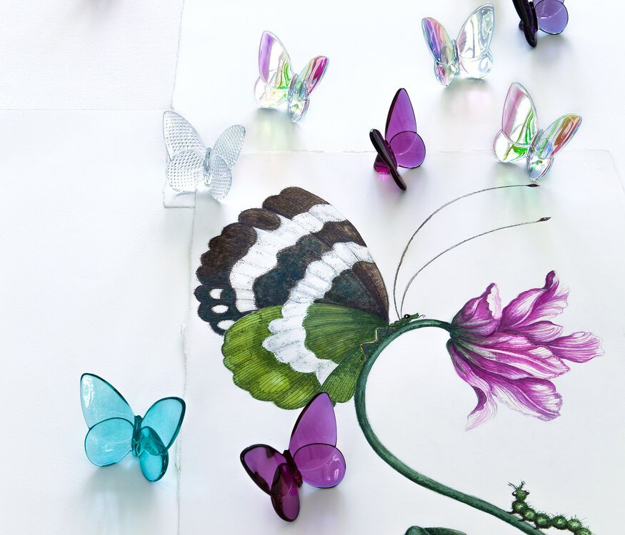 PAPILLON LUCKY BUTTERFLY  TURQUOISE - 3