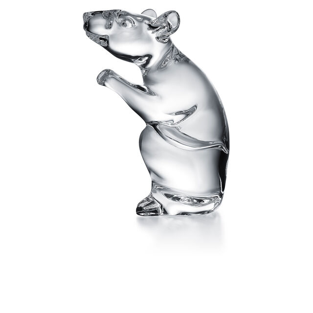 ZODIAQUE MOUSE 2020, Clear